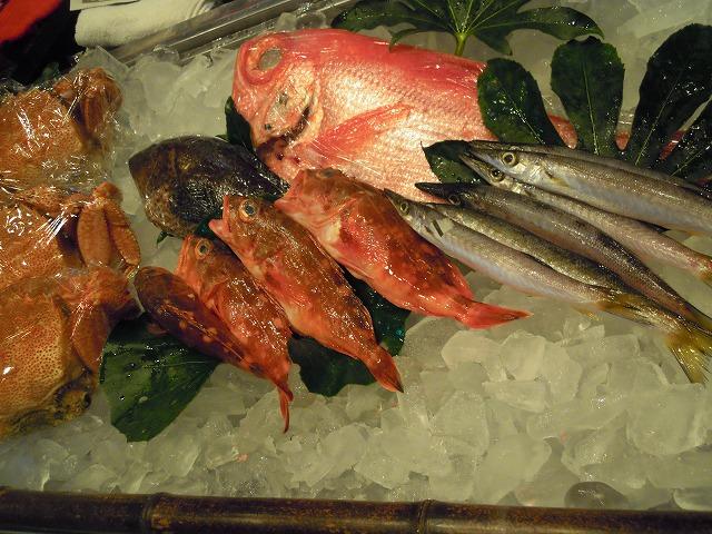 DSCN2103カウンターの新鮮な魚.jpg